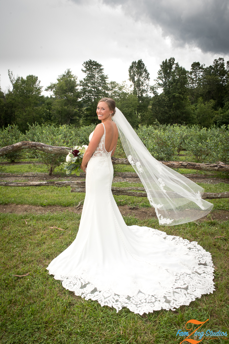 Hendersonville Wedding Photographers, FamZing Studios