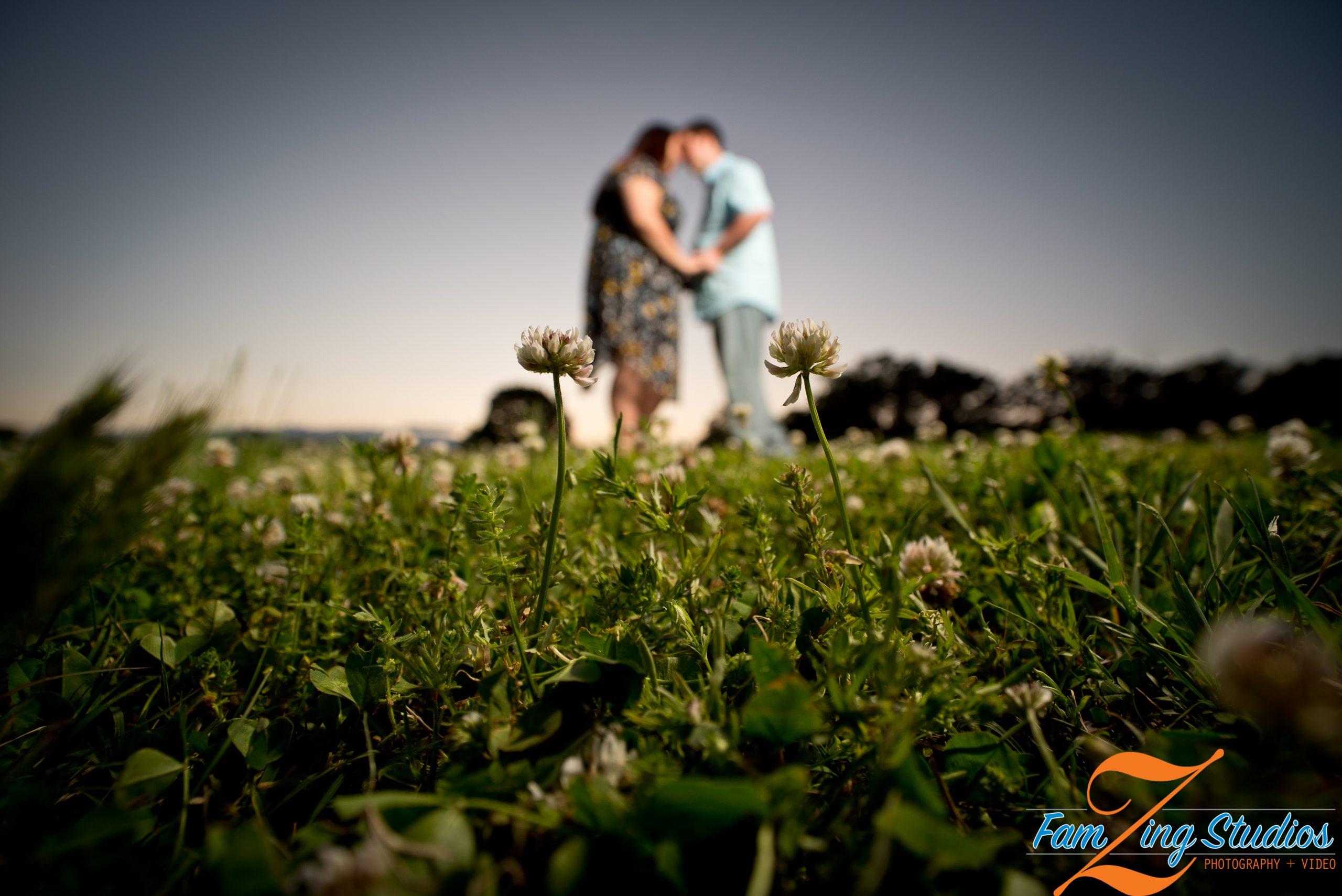 Clemson Botanical Gardens Engagements